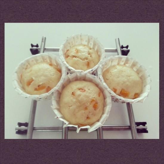 Steamed Yogurt with Pumpkin Cupcakes