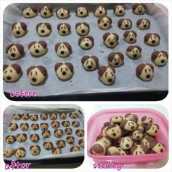 yap lai fan - doggie cookies