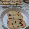 yap - cranberries biscotti