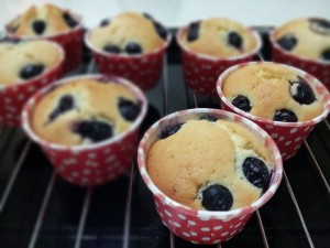 yap lai fan-blueberry cupcake