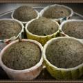 Steam Black Sesame Cup Cake